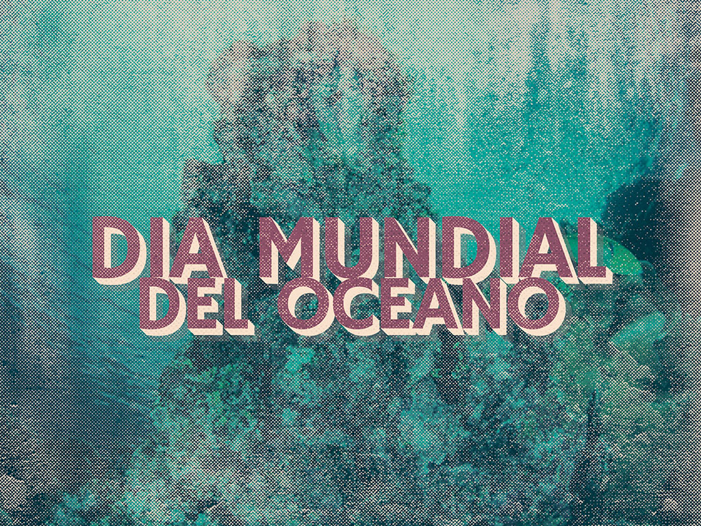 Dia mundial del oceano Lucas Garcia Surf