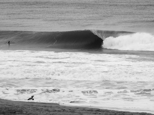 Derecha en Los Angeles, California - Surfer Magazine